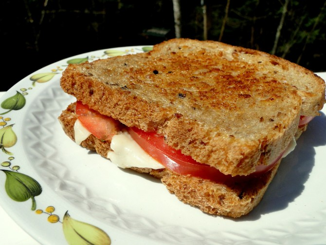 Cooking for Students Grilled Cheese and Tomato Provolone Sandwich